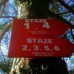 staze3v